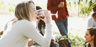 How to Drink Wine the Correct Way