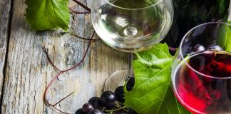 Best Italian Table Wines