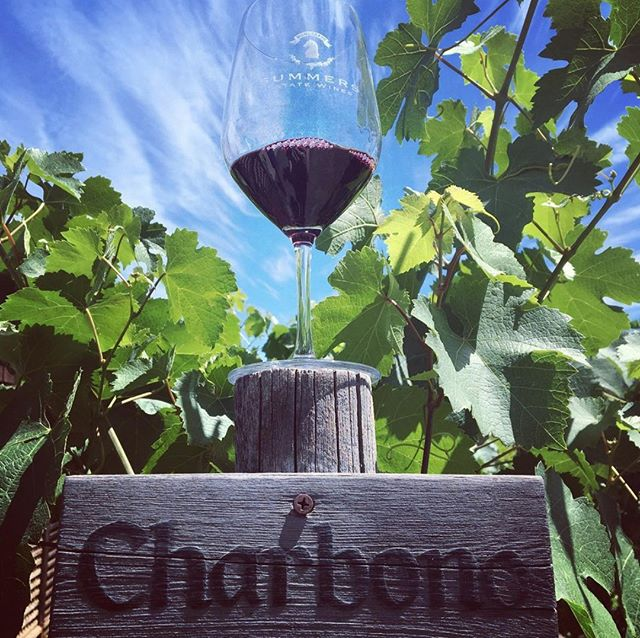 Uncorked Charbono