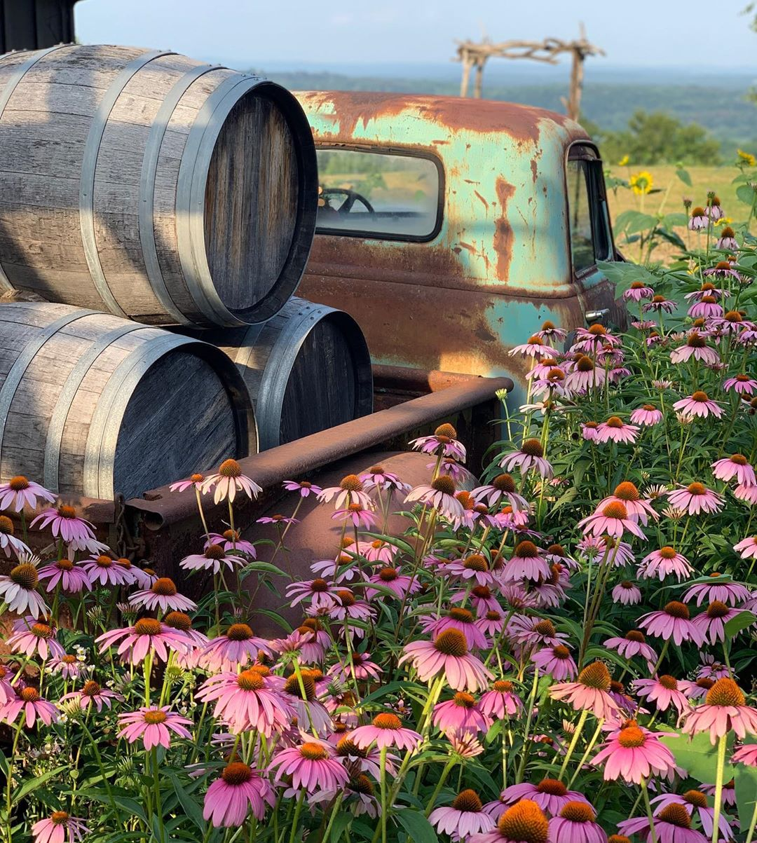 Ultimate US Wine Country Guide