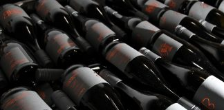 All You Need to Know About Thermoelectric Wine Coolers